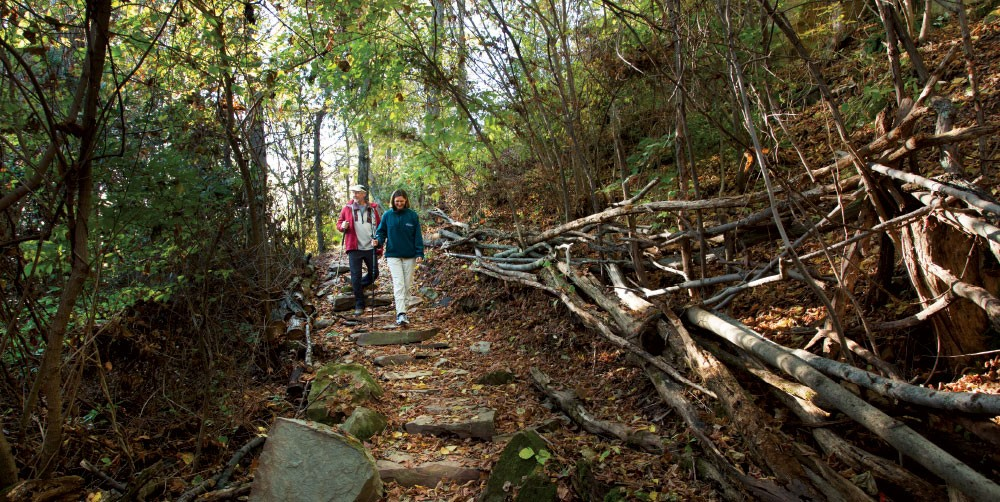 5 West Virginia Autumn Hikes Perfect for the Family